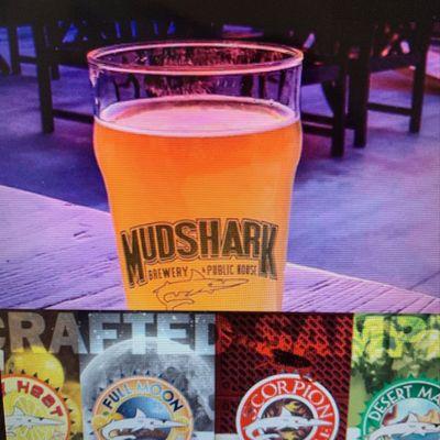 Mudshark Brewery and Public Housel