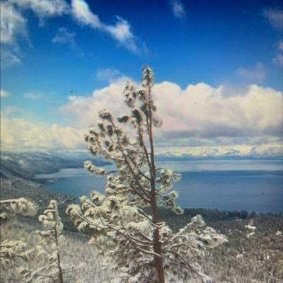 Tahoe Biltmore